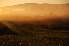 Beautiful misty sunrise over the hills Stock Images