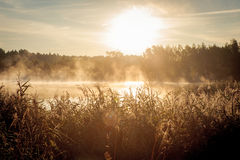 Beautiful misty sunrise over the lake Stock Photo