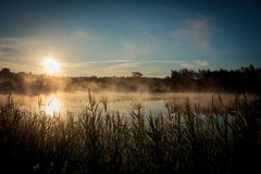 Beautiful misty sunrise over the lake Royalty Free Stock Images