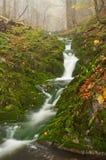 Beautiful Misty Waterfall royalty free stock photos