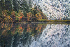 Beautiful mixed autumn and winter scene with reflection in the mirror lake. Stock Image