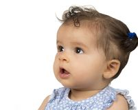 Six month old, interracial girl in profile royalty free stock images
