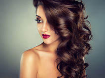 Beautiful model brunette with long curled hair. Stock Images