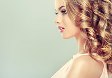 Beautiful model with  elegant hairstyle . Stock Image