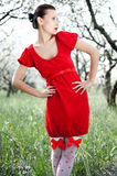 Beautiful model in red dress Royalty Free Stock Photos