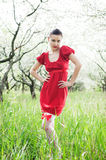 Beautiful model in red dress Royalty Free Stock Image