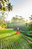 Beautiful model in red dress at Tegalalang Rice Terrace 10 Royalty Free Stock Images