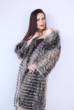 Beautiful model standing in fur coat from raccoon Stock Photography