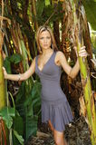 Beautiful model in the tropics. Beautiful blond model in a 3/4 shot posing in tropical setting. She's wearing a form-fitting gray dress with v-neckline and a royalty free stock photo