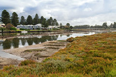 Beautiful modern houses along the Moyne River at Port Fairy in V. Ictoria, Australia with colorful ground cover plants in the foreground Stock Photography