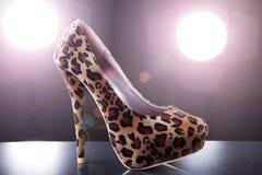 Beautiful modern Italian shoes Stock Image