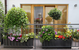 Beautiful modern terrace with a lot of flowers Royalty Free Stock Photos