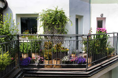 Beautiful modern terrace with mix of summer flowers Royalty Free Stock Images