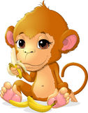 Beautiful monkey that holds bananas Royalty Free Stock Images