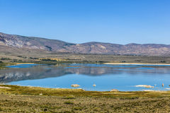 Beautiful Mono Lake in California Royalty Free Stock Images