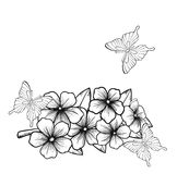 Beautiful monochrome black and white background with a border of flowering tree branches and butterflies Royalty Free Stock Image