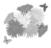 Beautiful monochrome black and white  background with bouquet flowers and butterflies. Royalty Free Stock Photo