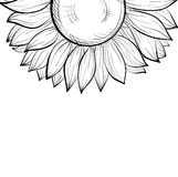 Beautiful monochrome black and white background with a floral border of sunflower. Hand-drawn contour lines and strokes. Perfect for background greeting cards Stock Image