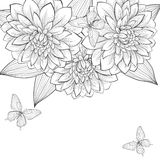 Beautiful monochrome black and white background with frame of dahlia flowers and butterflies. Hand-drawn contour lines and strokes. Perfect for background
