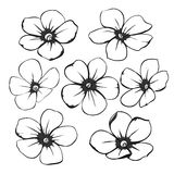Beautiful monochrome black and white floral collection with leaves and flowers. Stock Images