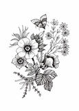Beautiful monochrome, black and white flower isolated. Hand-drawn contour lines strokes. Stock Image