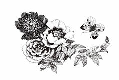 Beautiful monochrome, black and white flower isolated. Hand-drawn contour lines strokes. Stock Photography