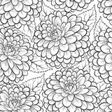 Beautiful monochrome, black and white seamless background with flowers dahlia. Royalty Free Stock Photo