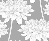 Beautiful monochrome, black and white seamless background with flowers dahlia with a stem. Royalty Free Stock Images