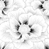 Beautiful monochrome black and white  seamless background with flowers. Stock Photos