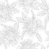 Beautiful monochrome black and white  seamless background with flowers. Stock Photography
