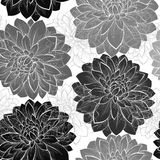 Beautiful monochrome black and white  seamless background with flowers. Royalty Free Stock Photography