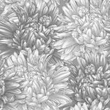 Beautiful monochrome black and white seamless background with flowers. Stock Image