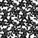 Beautiful monochrome, black and white seamless background with lilies and butterflies. Hand-drawn contour lines. Royalty Free Stock Photography