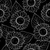 Beautiful monochrome black and white seamless background with sunflowers. Stock Images