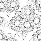 Beautiful monochrome black and white seamless background with sunflowers. Hand-drawn contour lines and strokes. Stock Photography