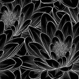 Beautiful monochrome, black and white seamless pattern with lotus flowers. Stock Images