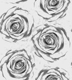 Beautiful monochrome, black and white vertical seamless background with gray roses, sprays, drops. Royalty Free Stock Photography