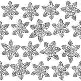 Beautiful monochrome Flowers set. Vector seamless pattern. Nice colorful Flowers set. Vector Illustration Stock Photos