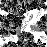 Beautiful Monochrome Seamless Floral Pattern Stock Photos