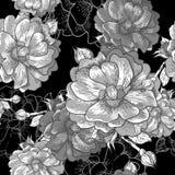 Beautiful Monochrome Seamless Rose Background Stock Photo