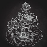 Beautiful monochrome vector floral bouquet of lotus flowers Stock Photo