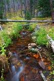 Beautiful Montana Stream Royalty Free Stock Photography