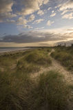 Beautiful moody sunset over sand dunes Royalty Free Stock Photos