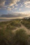 Beautiful moody sunset over sand dunes Royalty Free Stock Photos