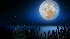 Beautiful moon on lake, best loop video background