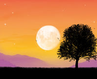 Beautiful moonlight. Relax time in a beautiful moonlight Royalty Free Stock Photo