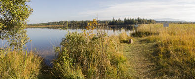 Beautiful moor lake kirchsee in autumn, with nature protection a Stock Photography