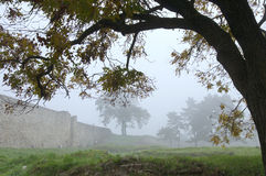 Morning foggy in Belgrade fortress Kalemegdan Stock Images