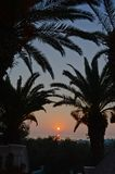 Beautiful morning in the greek paradise. Sunrising early in a summer morning in the greek island of Corfu from behind of palm trees Stock Photography