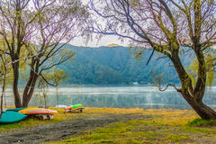 Beautiful morning at Lake Saiko in Yamanashi, Japan with the col. Orful boats parked under the trees on the lake waterfront and mountain background Stock Photography